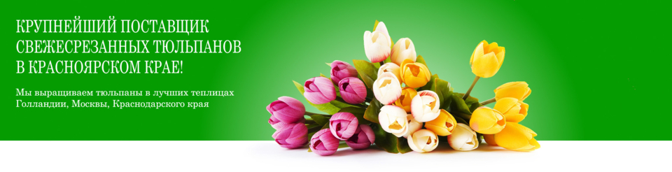 Живые цветы опт красноярск тюльпаны — 7